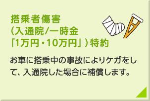 搭乗者傷害(入通院/一時金「1万円・10万円」)特約:お車に搭乗中の事故によりけがをして、入通院した場合に補償します。